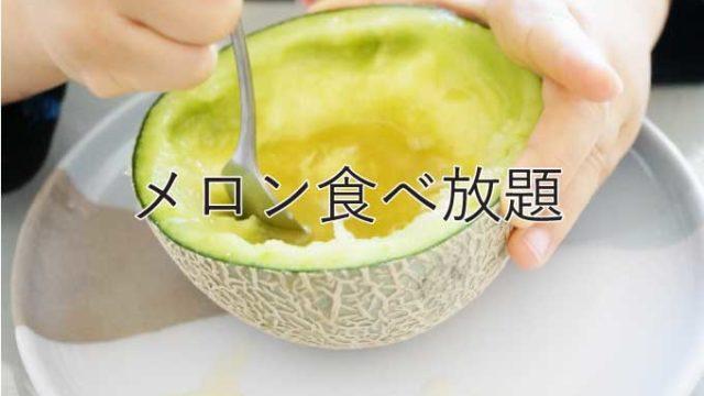 【メロン食べ放題】田原で30分1,000円はかなりオススメ!