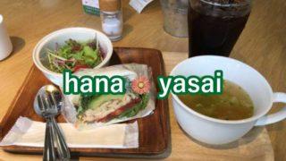 hana・yasai豊橋店のサンドイッチはベジ&ほっこり気分を味わえる